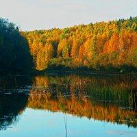 Вечер на реке :: Александр Преображенский