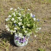 Полевые цветы :: Ekaterina Voronov@