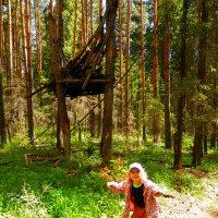 в лесу :: евгений Смоленцев