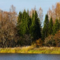 Осень :: Денис Матвеев