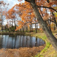 Осень в Гатчинском парке. :: Anton Lavrentiev