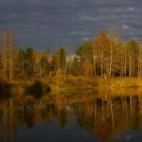 Осенний вечер :: Денис Матвеев