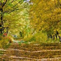 Осень :: Геннадий Беляков