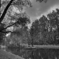 Старый парк :: Sergey Polovnikov