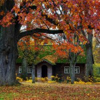 Осень в Михайловском :: Vlad Bagno