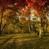 Осенний костер :: Тамрико Дат