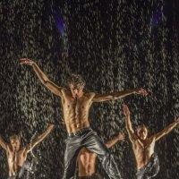 Шоу под дождем :: Екатерина Рябинина
