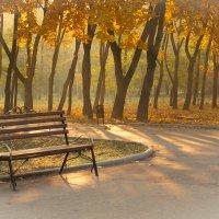 Утро в парке :: Геннадий Яременко