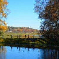 Осенняя пора :: Mария Семенова