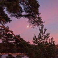 Луна на закате :: Katerina Bondar