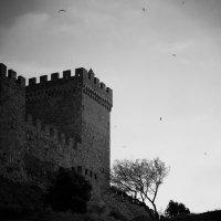 Генуэзская крепость. :: Наталья Дороднова