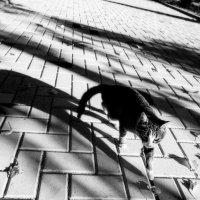 Тише,тише!Где-то мыши! :: Vadim77755 Коркин