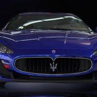Maserati :: Katarina Guz`
