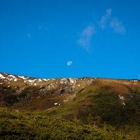 Луна над плечем Говерлы :: Владимир Коптев