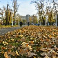 Осень в сквере :: юрий Амосов