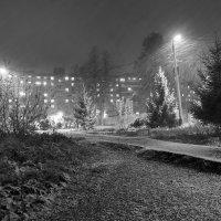 Снегопад :: Валерий Молоток