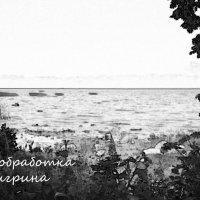 Финский залив (г. Петергоф, Ленинградская область) :: Юлия Тигрина
