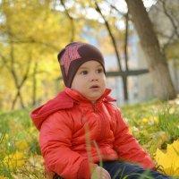 Золотая осень :: Дмитрий Орлов