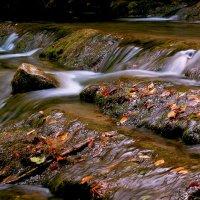 Осенние воды неспешны :: Юрий Морозов