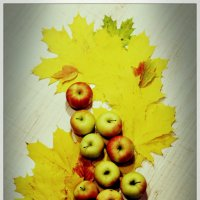 Яблоки на кленовых листьях :: Юлия Тарасенко