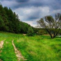 Старая дорога :: Денис Бугров