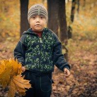 Осени букетик :: Владимир Манин