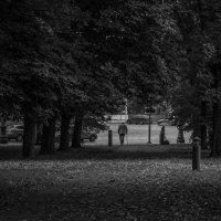 Осень в Вильнюсе :: Анна Глембоцкая