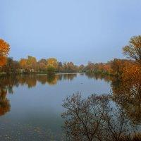 Осеннее отражение :: Наташа С