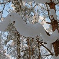 Снежная такса :: максим лыков
