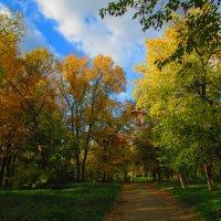 осень в парке :: Marina Timoveewa