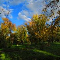 осенний парк :: Marina Timoveewa