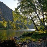 Река :: Владимир Михайлович Дадочкин