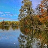 парк воронцово осень :: юрий макаров