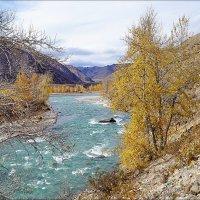 Чуя-река у слияния с Катунью :: Виктор Четошников
