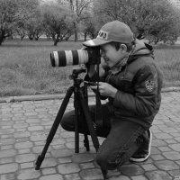 Фотограф :: Sergey Polovnikov