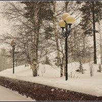 Снег ложится :: Василий Хорошев