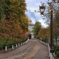 Благословенны ваши стремленья :: Ирина Данилова