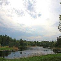 озеро в парке :: Наталья