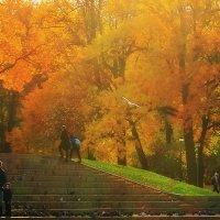 парк в октябре :: Ирэна Мазакина