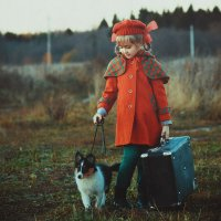 в дорогу :: Olga Firsova