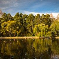 Озеро в зоопарке :: Николай Мелонов