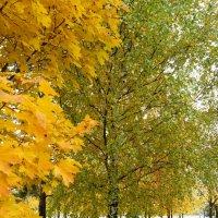 Осенний вид :: Andy Bayt