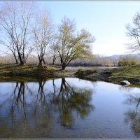 Чудесный денёк октября :: galina tihonova