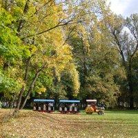 парк :: Maрина Рыдак