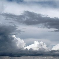 Небо перед дождем :: Ольга Иргит