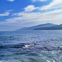 Сахалин. Охотское море. :: fillarret-2