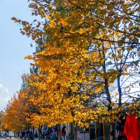 Осень... :: Елена Васильева