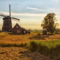Голландский пизаж... :: АндрЭо ПапандрЭо