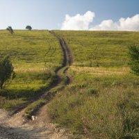 Дорога на облака :: Анна Титова