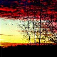 Осени закат :: Михаил Власов
